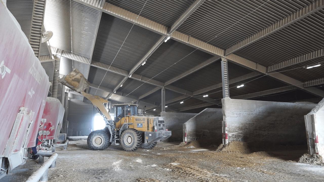 За добу кормовий центр агрофірми імені Довженка виготовляє близько 350 тонн кормосуміші вищої якості
